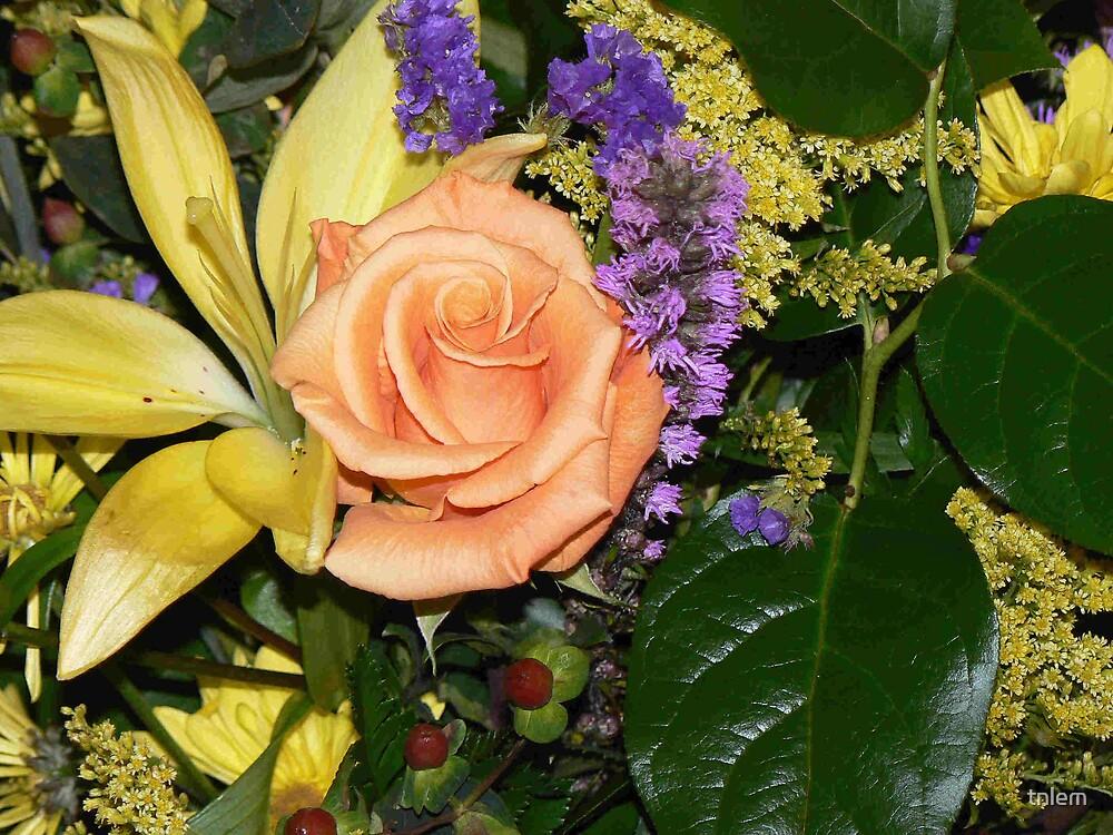 flowers by tnlem
