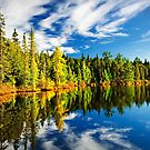 Forest reflecting in lake by Elena Elisseeva
