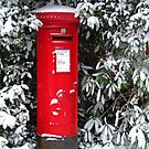 Post Box Christmas Card by RedHillDigital