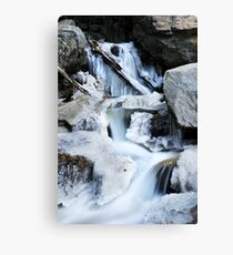 Freezing Falls Canvas Print