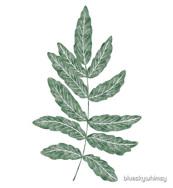 Tropical Botanical Leaves Dark Green Plant by blueskywhimsy