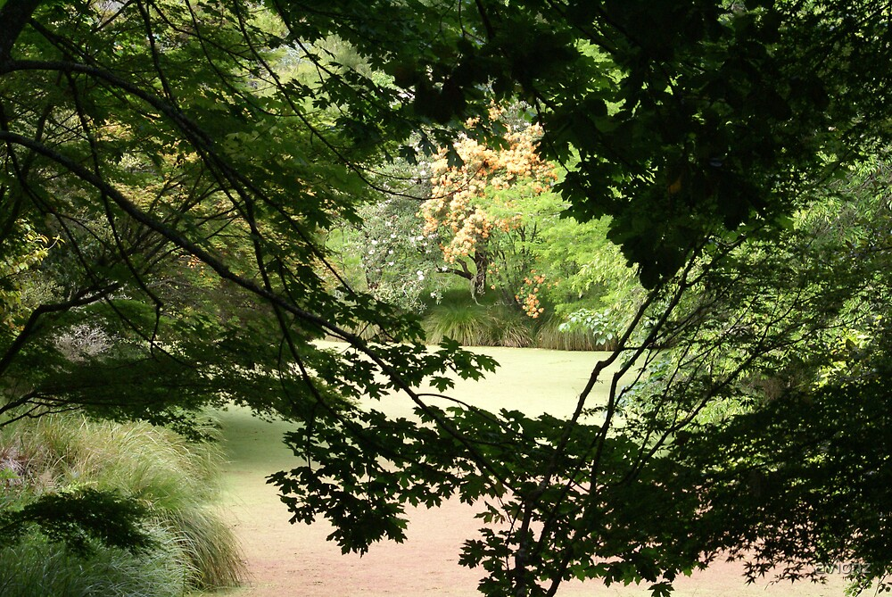 Gisborne Haven by avionz