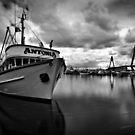 Fish Market by Alex Lau