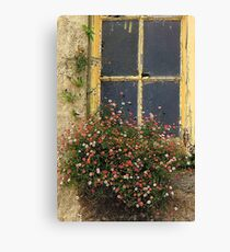 Every nook and cranny Canvas Print
