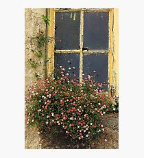 Every nook and cranny Photographic Print