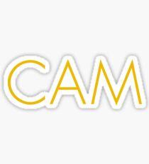 Cam Sticker