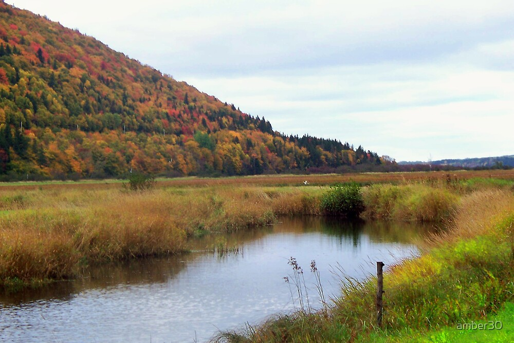 east margaree by amber30