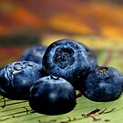 Blaubeeren - Stillleben von Evita