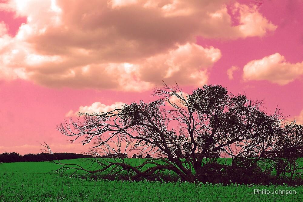 Technicolour Dreaming by Philip Johnson
