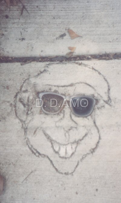 Smiling forever by D. D.AMO