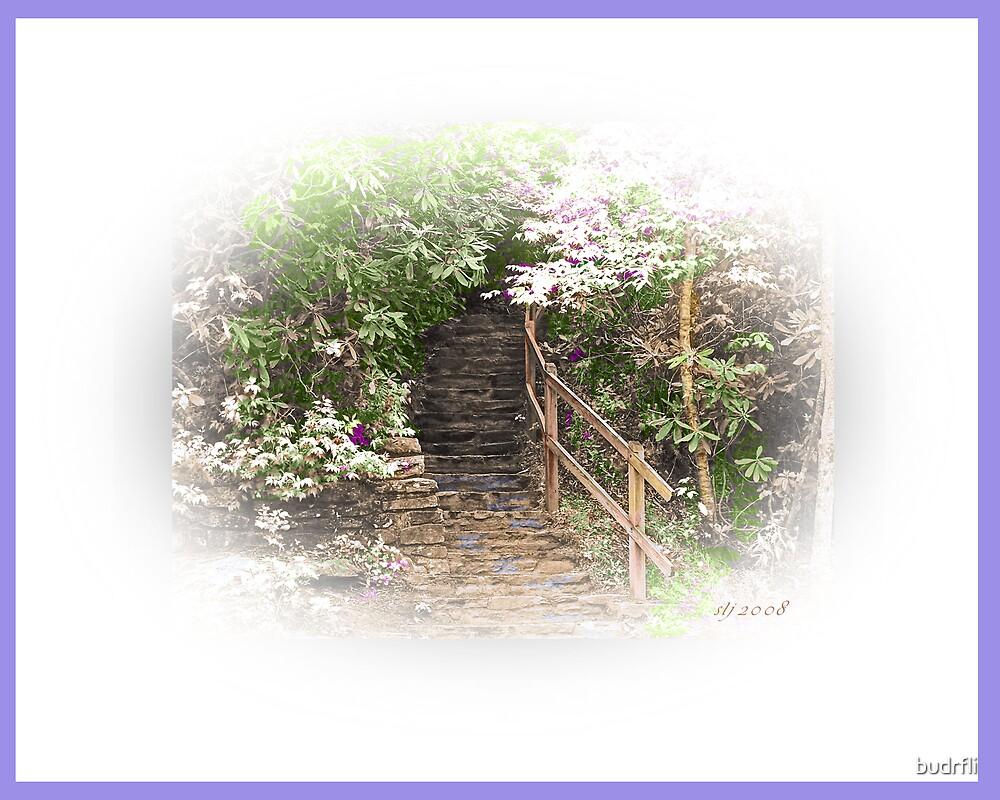 secret stairway by budrfli