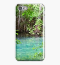 Through the Cypress Trees iPhone Case/Skin