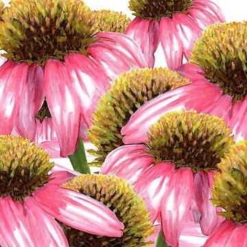 Coneflower design by botanicalsbyV