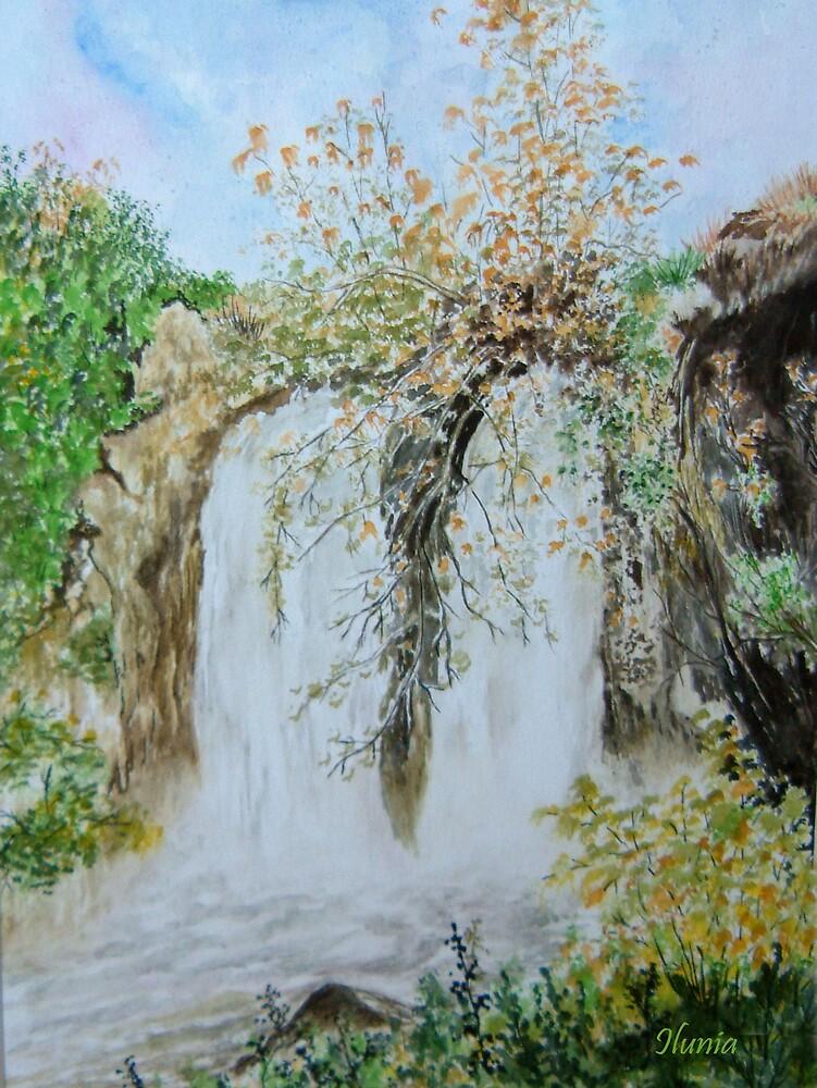 Waterfall by Ilunia Felczer
