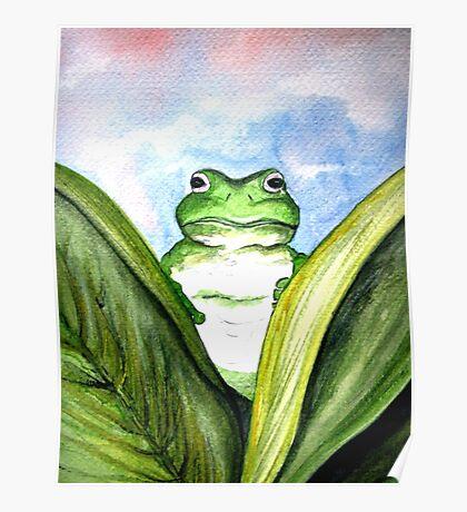 Peeping Frog  Poster