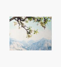 Apple Blossoms and Mountains  Art Board