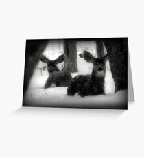 Winter Survival Greeting Card
