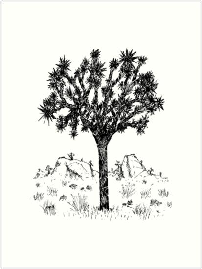 «Joshua Tree (Día)» de Hinterlund