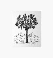 Lámina rígida Joshua Tree (Día)