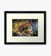 Ersine Mammal Framed Print