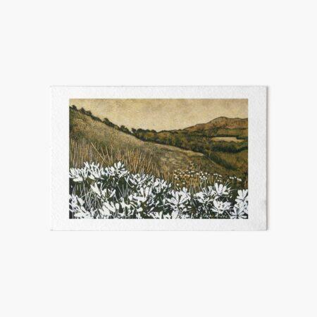 Byron Bay Dwarf Heath # 3 Art Board Print