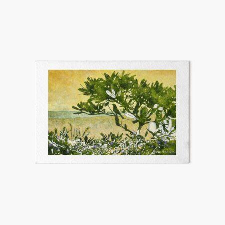 Fern-leafed Banksia Art Board Print