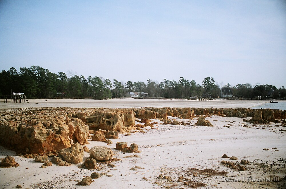 Southern Drought #2 by James J. Ravenel, III