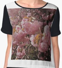 Cherry Blossoms and Spring Women's Chiffon Top