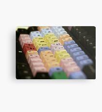 Avid Keyboard Medium Shot Metal Print