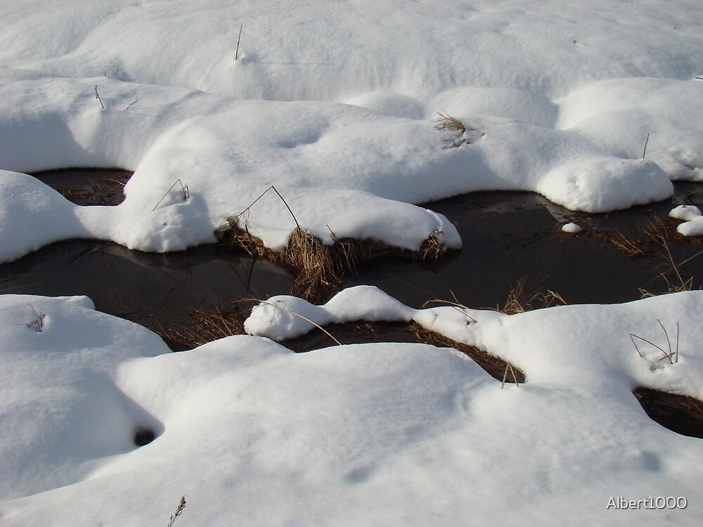 Winter scene #2 by Albert1000