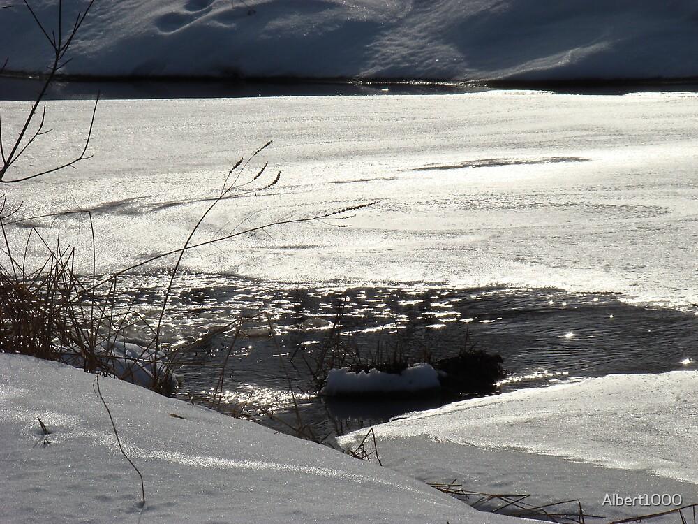 Winter scene #3 by Albert1000