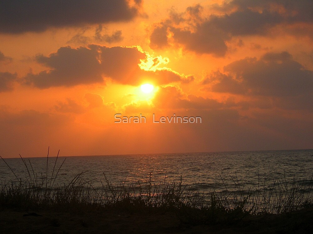 Sunset on the Ocean  by Sarah  Levinson
