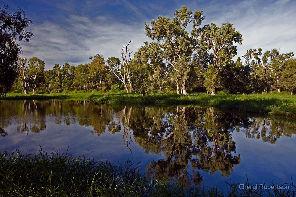 Morning Reflections by Cheryl Robertson