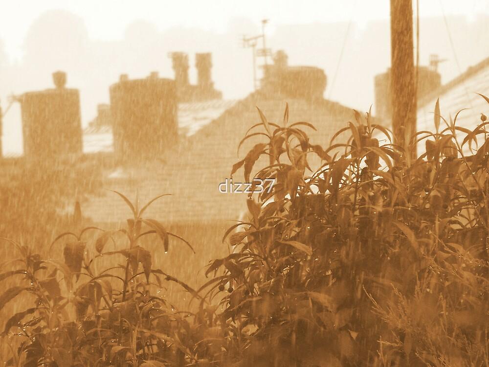 rainy time by dizz37