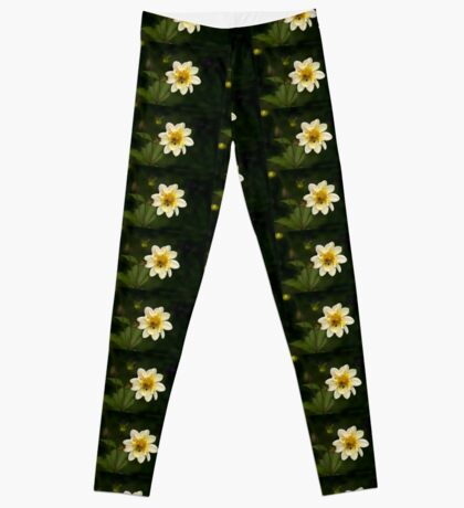 Two Bees or not Two Bees Leggings