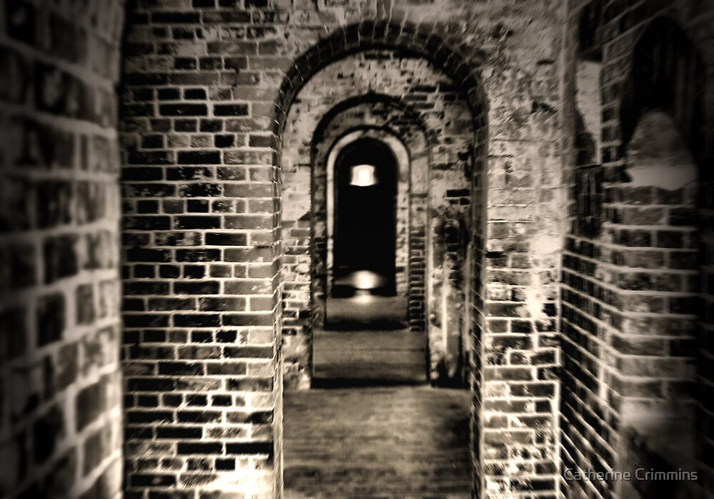 The Dark Tunnel Revisited by Catherine Crimmins