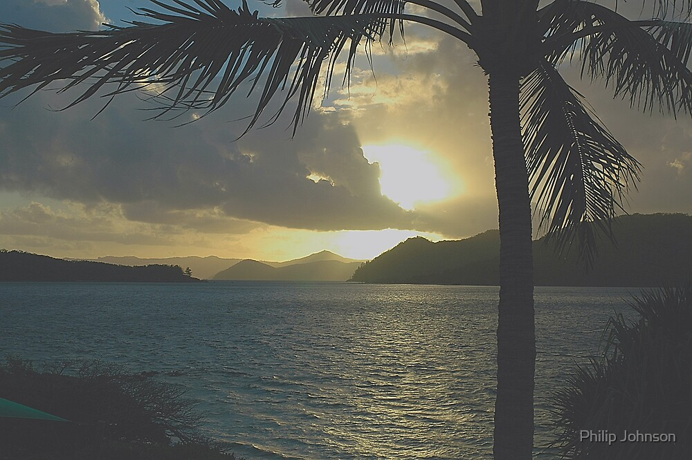 Daydream Gold - Daydream Island - Whitsunday Islands National Park by Philip Johnson