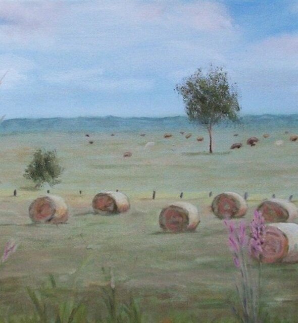 'Haybale Paddock' by Jaana Day