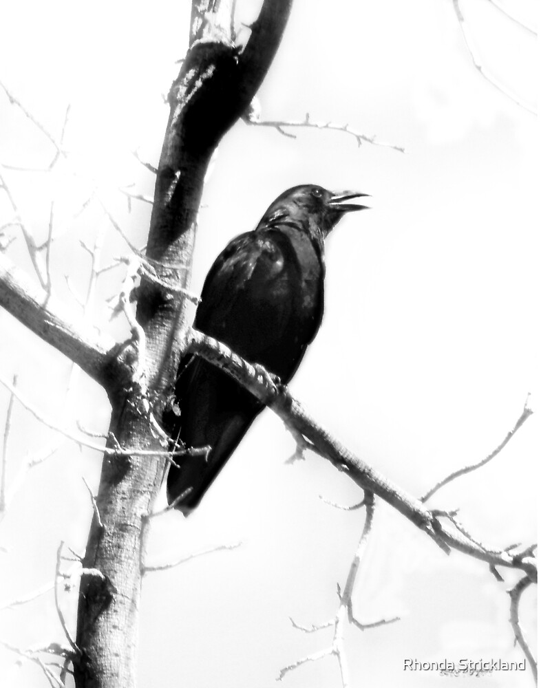Mother Crow by Rhonda Strickland