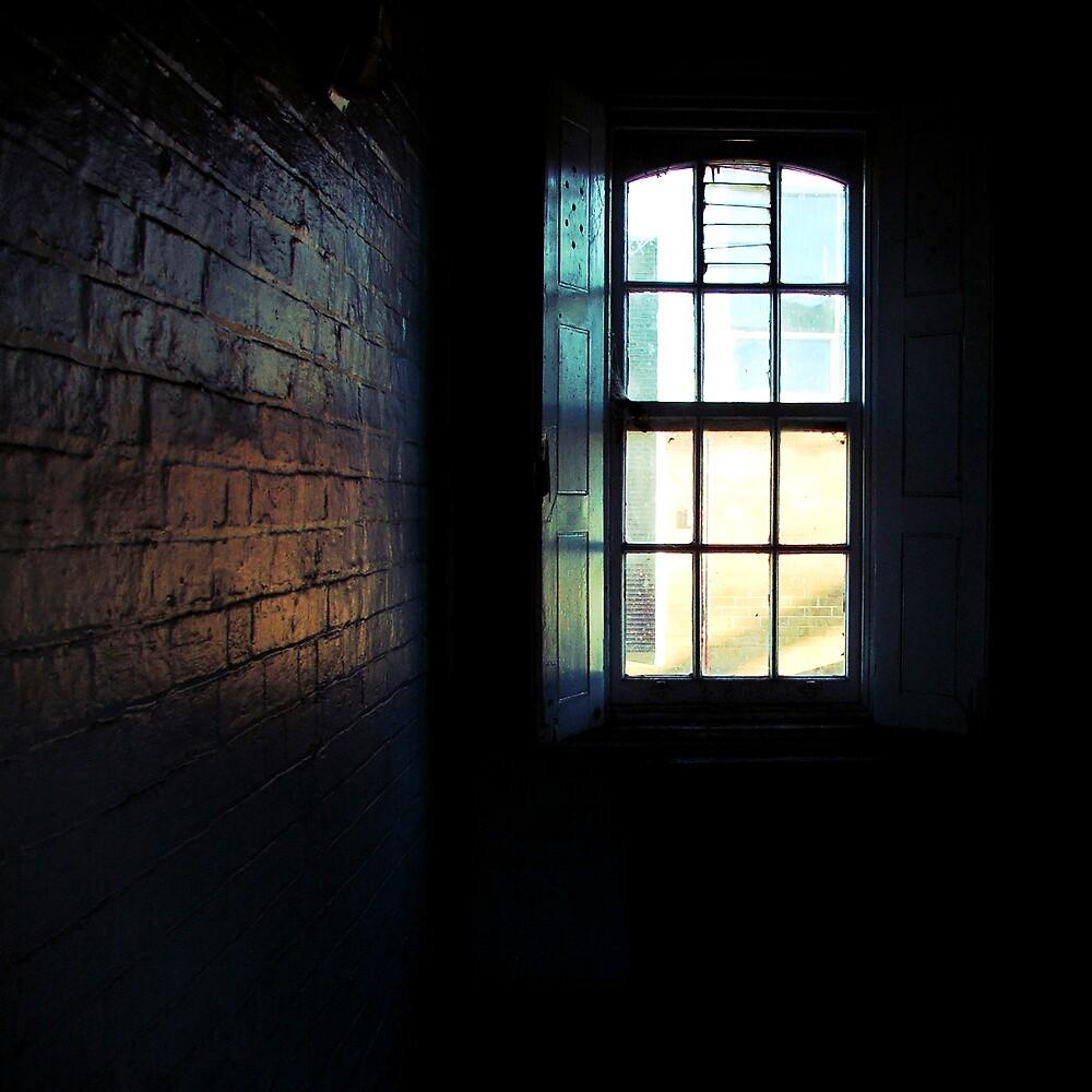 Cell by Belinda Fraser