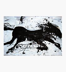 Black Horse 2 Photographic Print