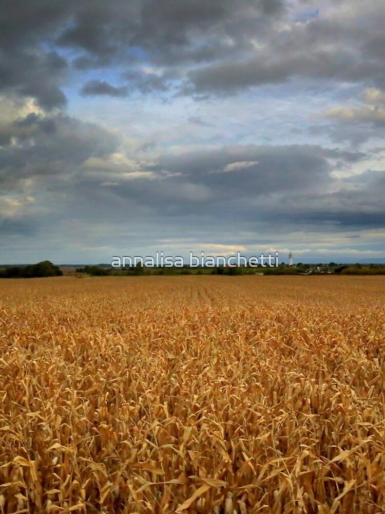 Rural landscape by annalisa56