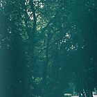 «Parque» de Marina Demidova