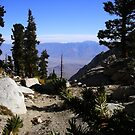 Sierra Mountain View by Willace