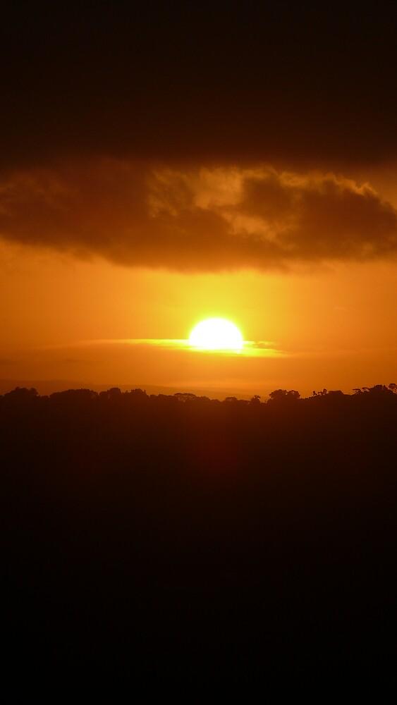 African Sunset by Matthew Weaver