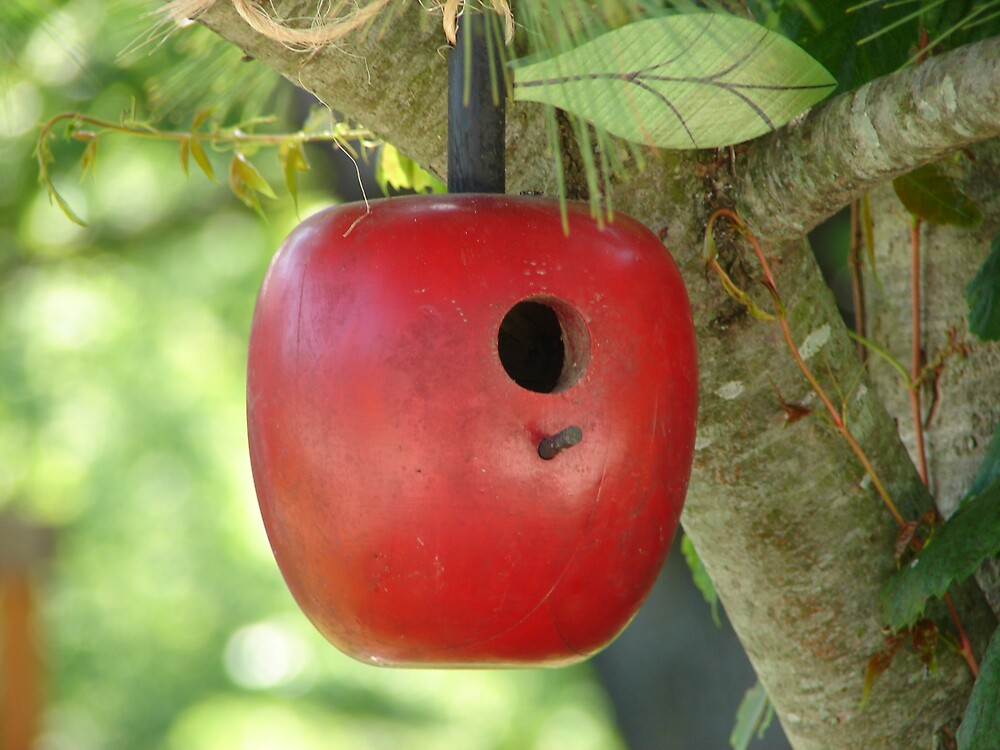 Bird House by inventor