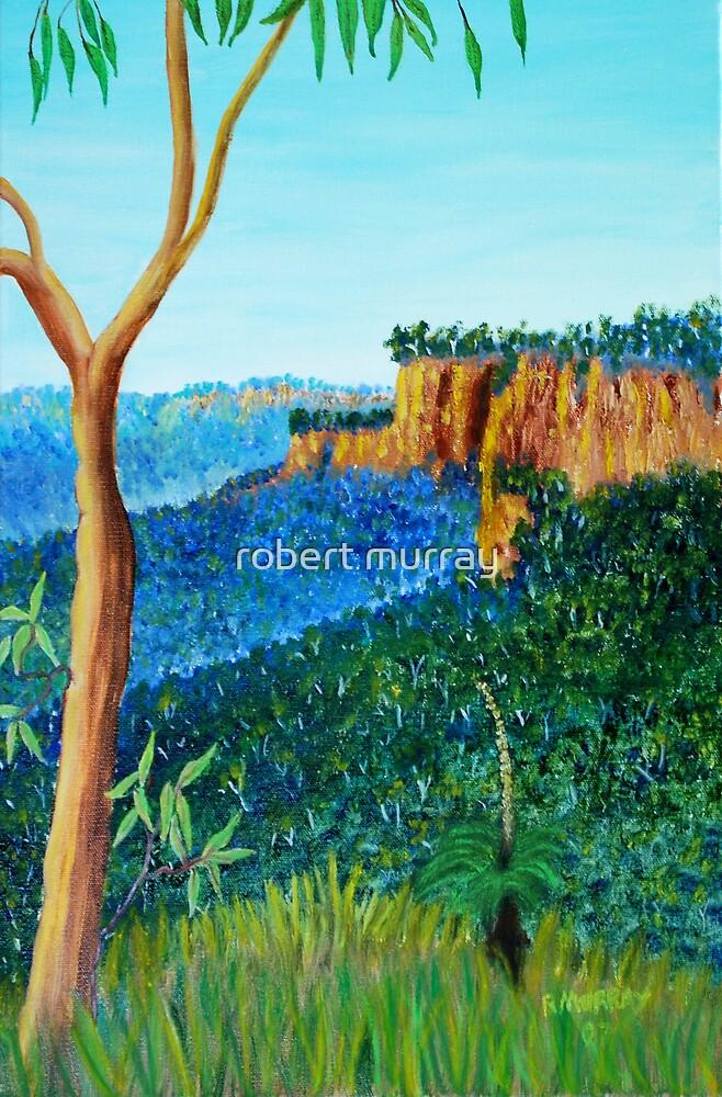 Jamison Valley Katoomba by robert murray