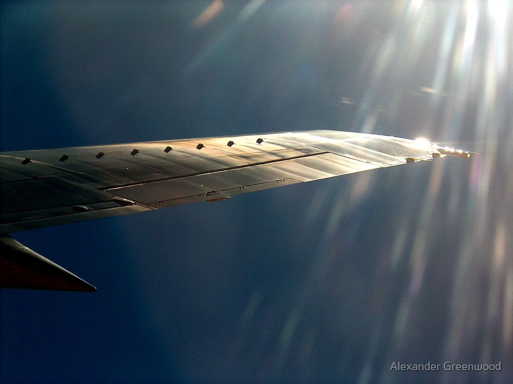 Where the Wing Meets the World by Alexander Greenwood
