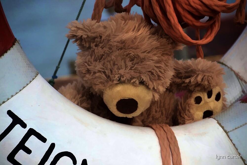 Teddy's Safe by lynn carter