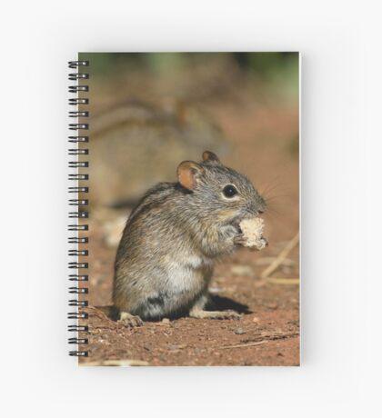 Striped Grass Mouse (Rhabdomys pumilio) Spiral Notebook